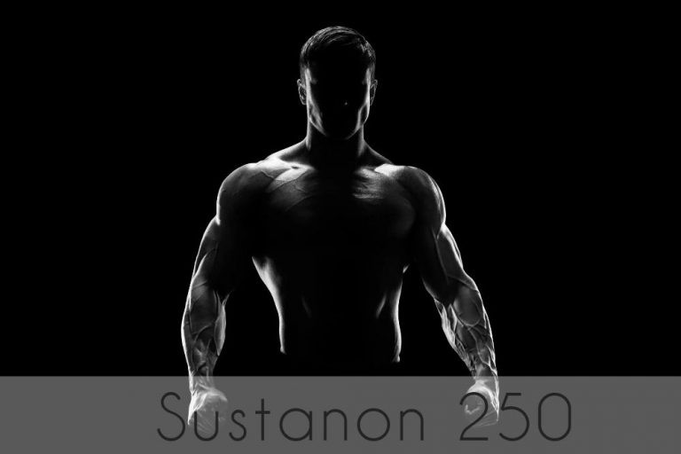 Detailed description of the steroid drug Sustanon 250