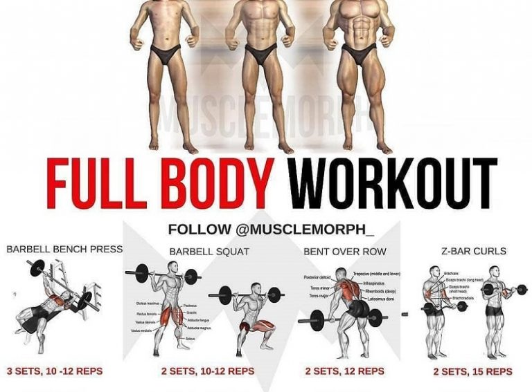 PHUL vs Full Body Workout: Which is better?