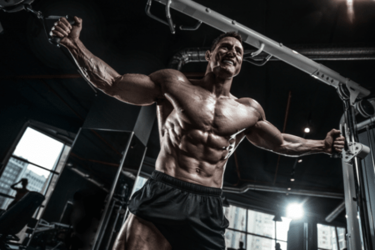 Power Hypertrophy Upper Lower (P.H.U.L.) Workout Routine