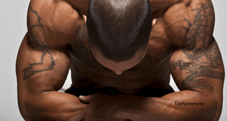 Major Things That Kill Your Testosterone: Telling about Signs of Low T and How to Boost Your Testosterone immediately