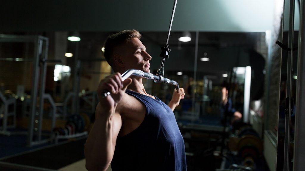 back exercises for beginners