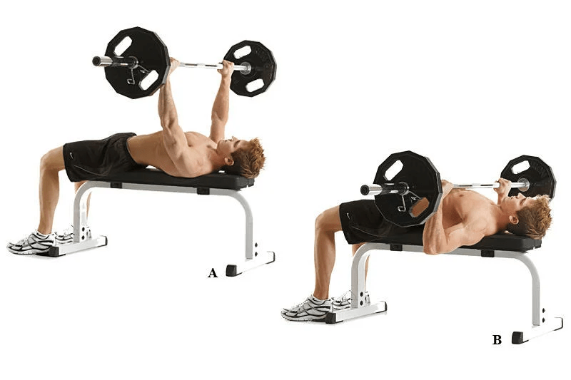 Bench press.  Source - Yandex.Pictures