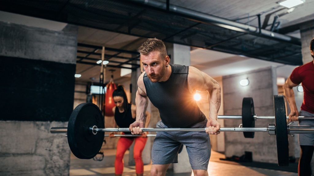bent-over barbell row back exercise for beginners