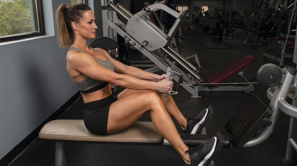 seated cable row back exercise for beginners