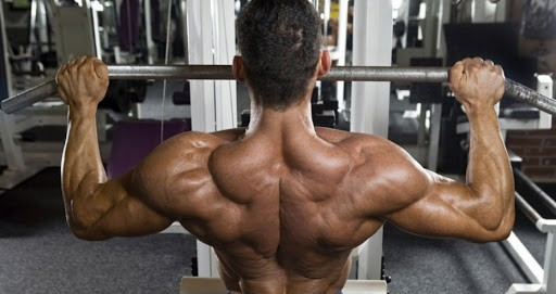 The Most Effective Back Exercises and Workouts for Beginner Athletes!